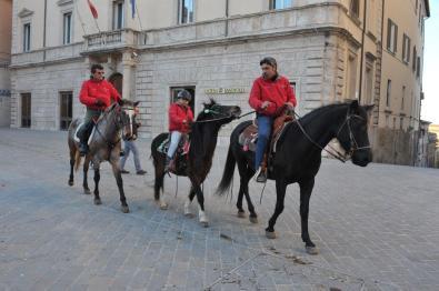 [29.01.2017] Cavalli infiocchettati - Rievocazione Storica MAS_6319