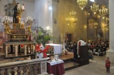 13.06.2018-Giugno-Antoniano-Messa-nella-festa-di-SantAntonio-vescovo-Domenico-MAS_8031