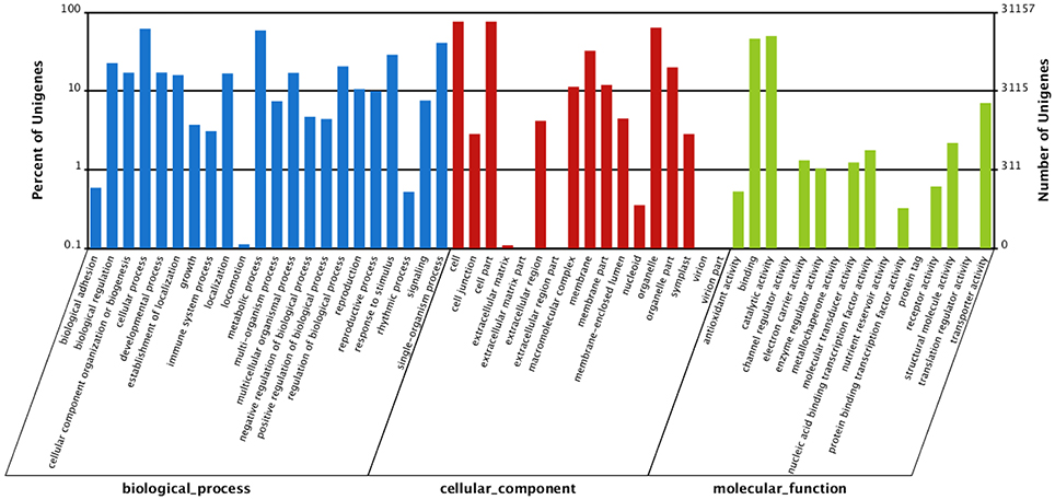 Post Translational Modification Table