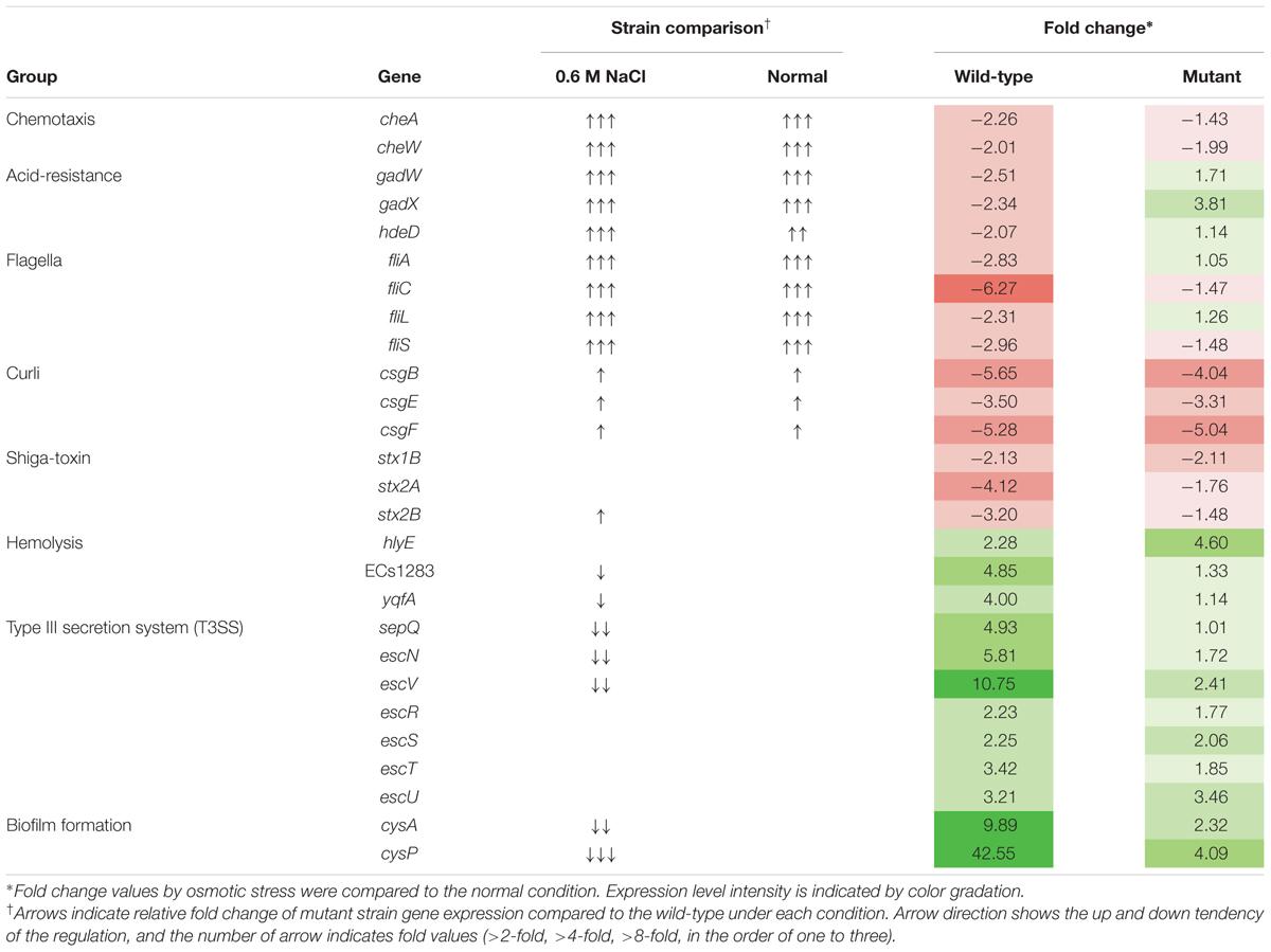 Environmental Influences Gene Expression Worksheet