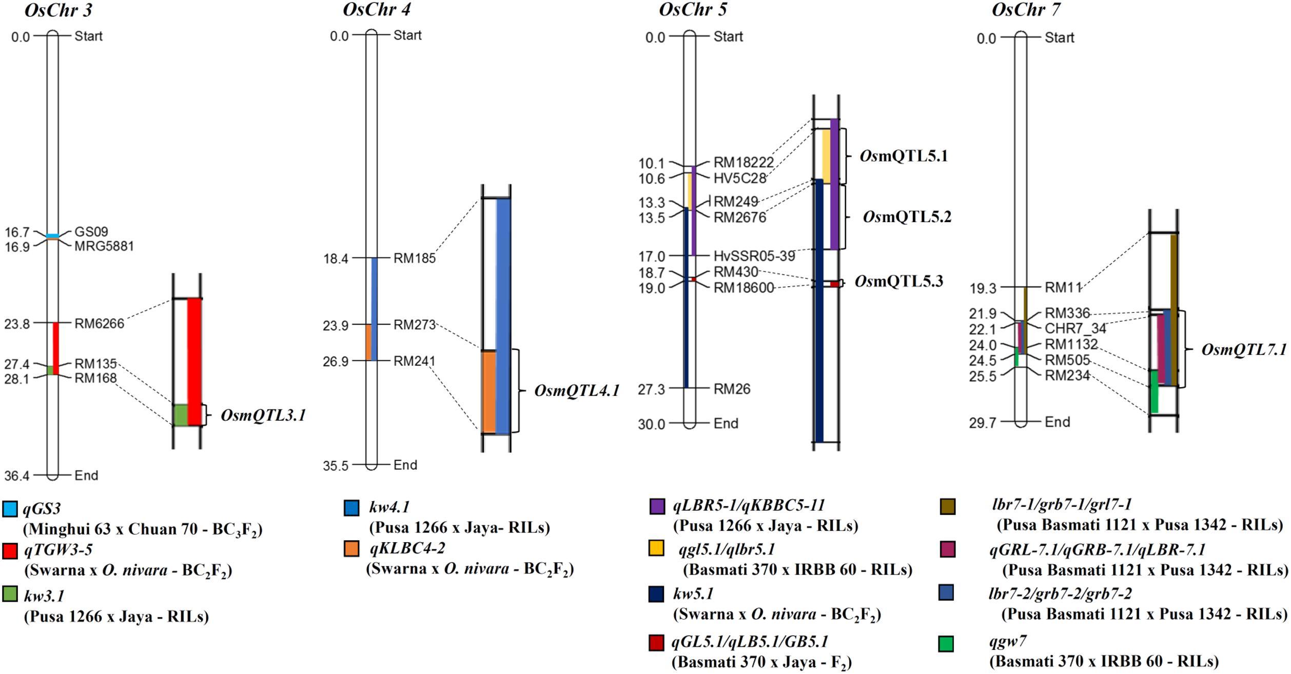 Diagram Of Genetic Enhancement