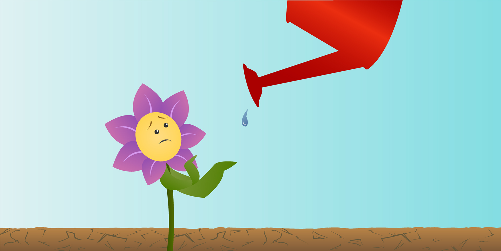How Do Plants Deal With Dry Days Frontiers For Young Minds