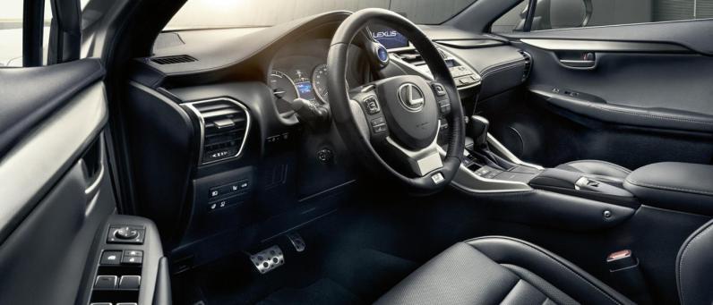 Lexus NX 2018 09