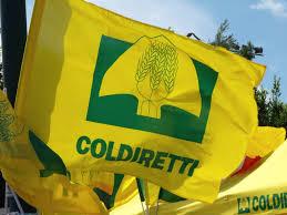 MADE IN ITALY. COLDIRETTI: DA PAESI RICCHI 100 MLD PRODOTTI FALSI.