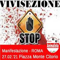 Caso Vivisezione e Macachi, il Partito Animalista Italiano presenta ricorso all'Alta Corte di Giustizia Europea CEDU per fermare gli esperimenti e la vivisezione in Italia. Proposto anche un tavolo tecnico al Ministero.