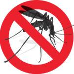 Zona Sora: S. Giuliano, mercoledì 21 luglio interventi di disinfestazione insetti nocivi
