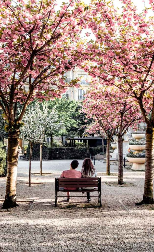A male and female sit on a wooden park bench between pink blooming cherry blossom trees in Paris, France.