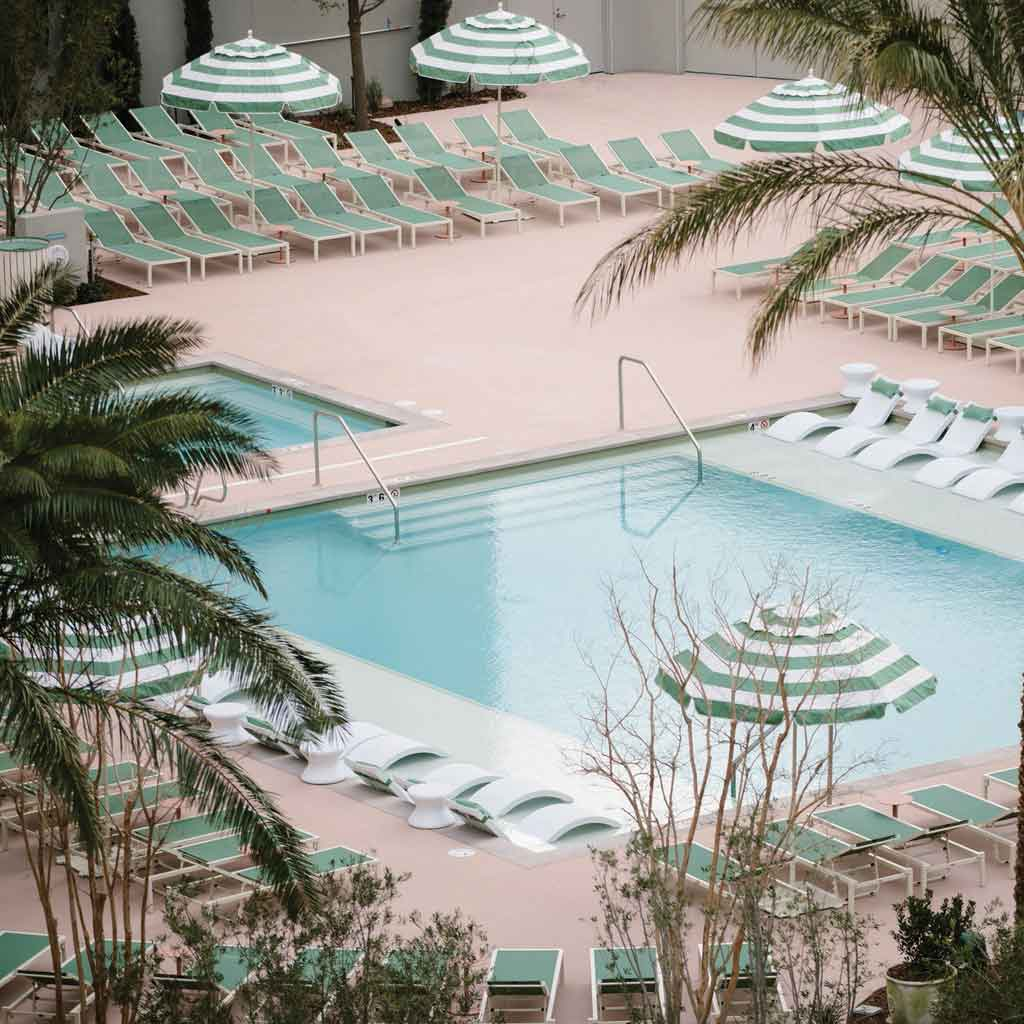 Landscape view of the Park MGM pool through some palm trees.