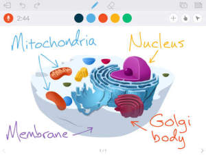 educreations_screenshot