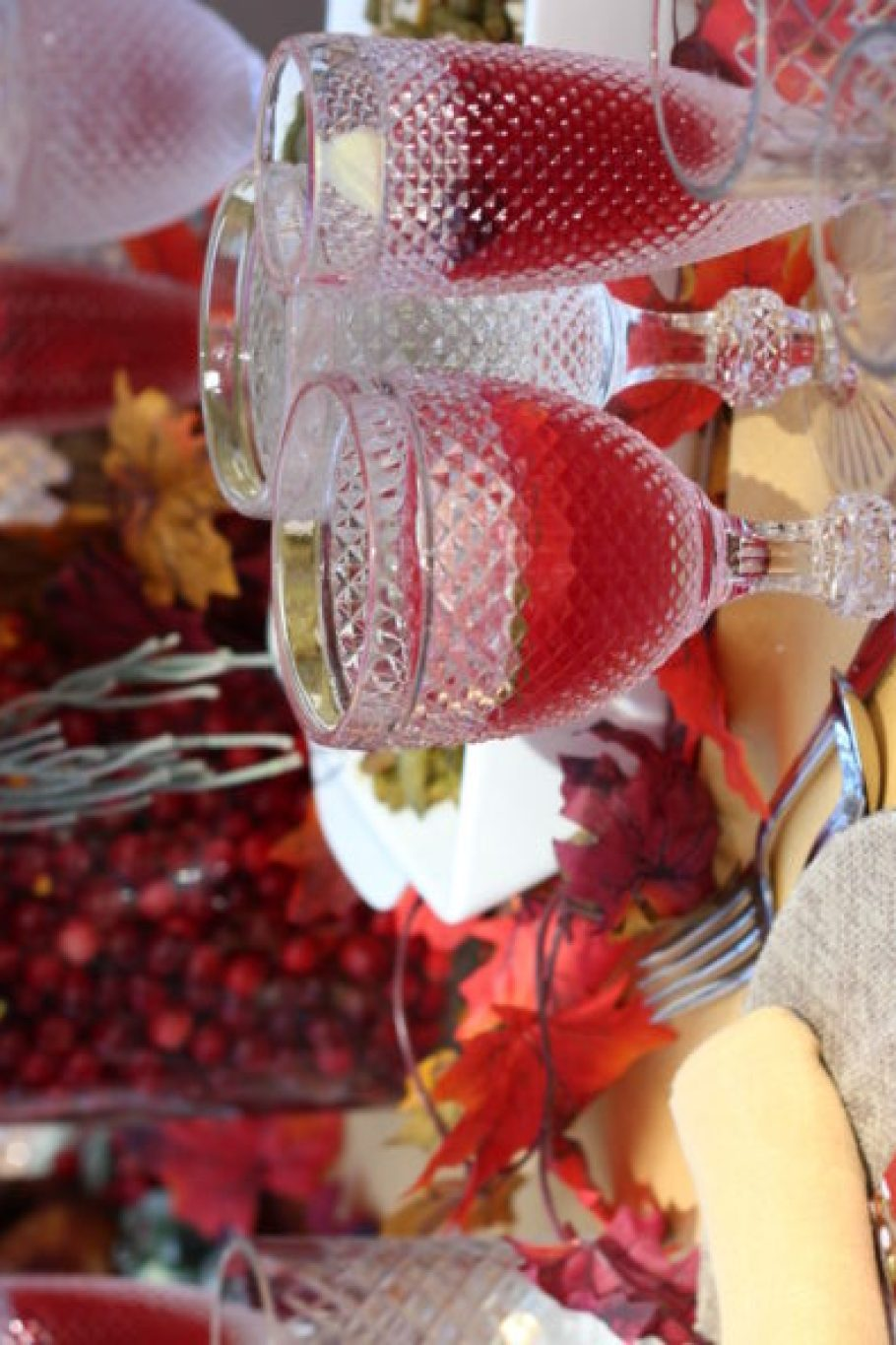 Ocean Spray and Curtis Stone Thanksgiving with The Frosted Petticoat 12
