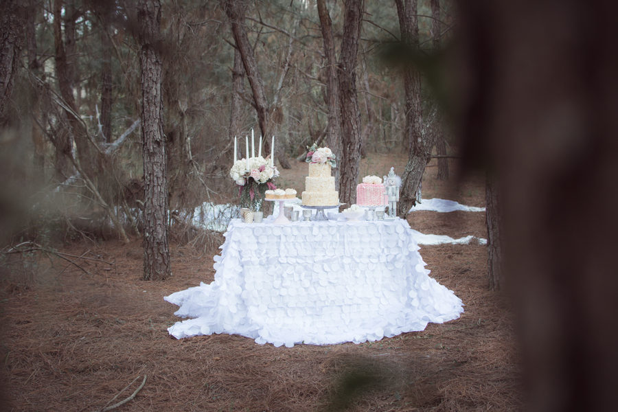 Rustic winter dessert table 11