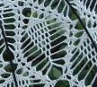 Un motif ananas