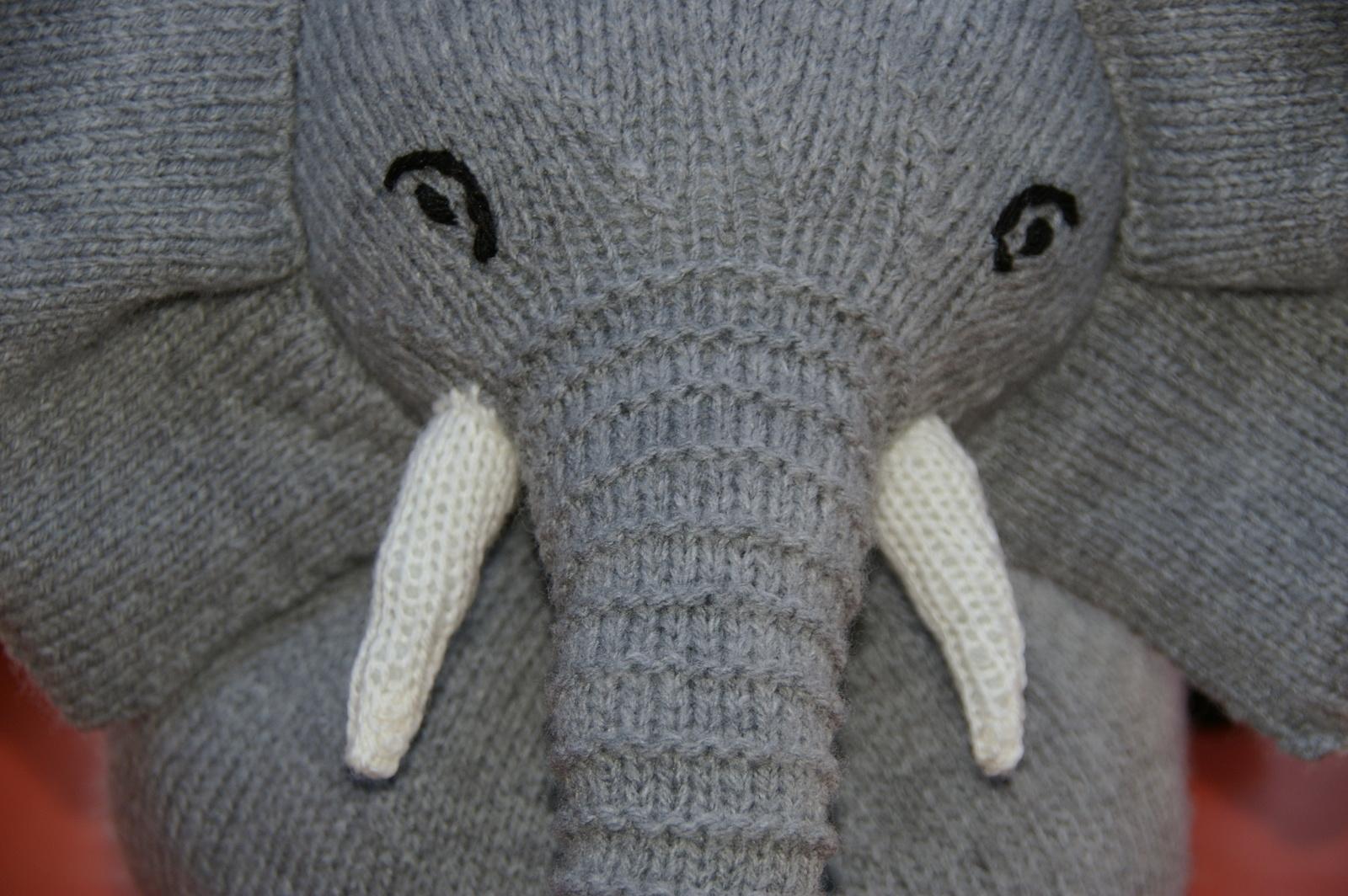 Notre éléphant en gros plan.