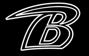blackhawks baseball logo