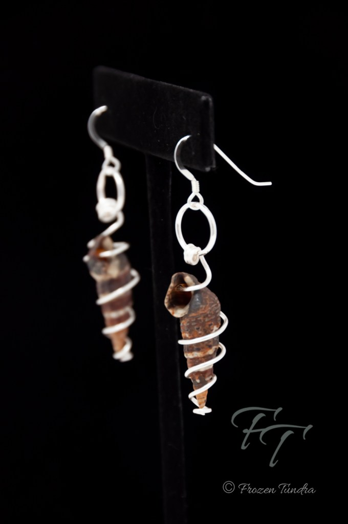 best friends snail shell earrings in silver, Batillaria zonalis, Japanese False Cerith Snail