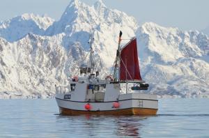 Lofotenvisserij, Lofoten, Noorwegen