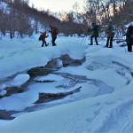 Sneeuwschoenwandeling Lyngen Alpen, Noorwegen
