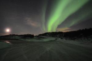 Noorderlicht bij Bjerkvik Foto: Fru Amundsen ©