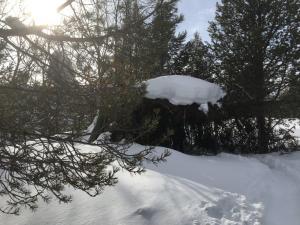 Sneeuwschoenwandeling Gargia Finnmark Noorwegen