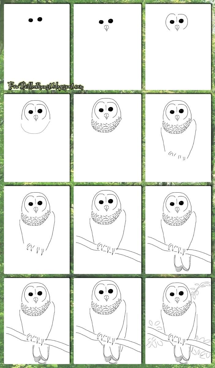 Hvordan lærer man at tegne? (Del 5) - Ugler