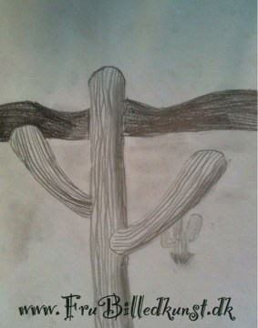 Kaktus - blyant og grafit - www.frubilledkunst.dk