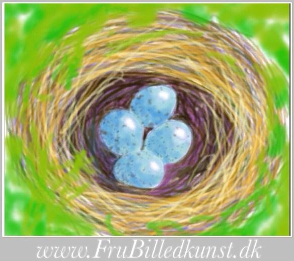 www.FruBilledkunst.dk - fuglereder - bird nest