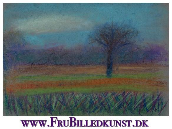 www.FruBilledkunst.dk - meadow in pastel