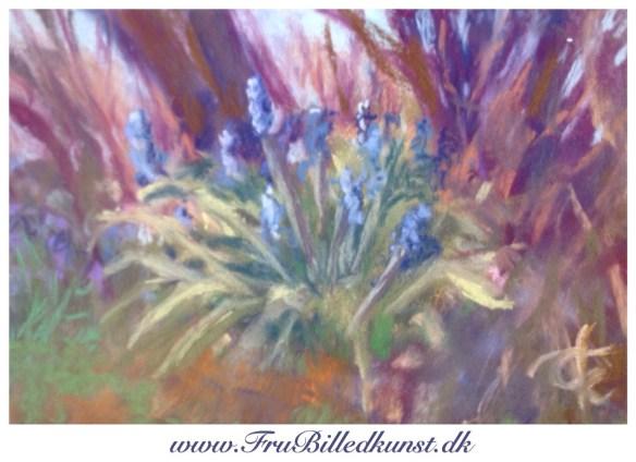www.FruBilledkunst.dk - pastel