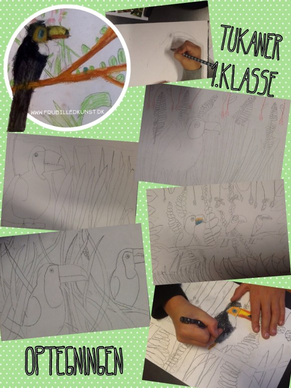 www.FruBilledkunst.dk - toucans 1st grade