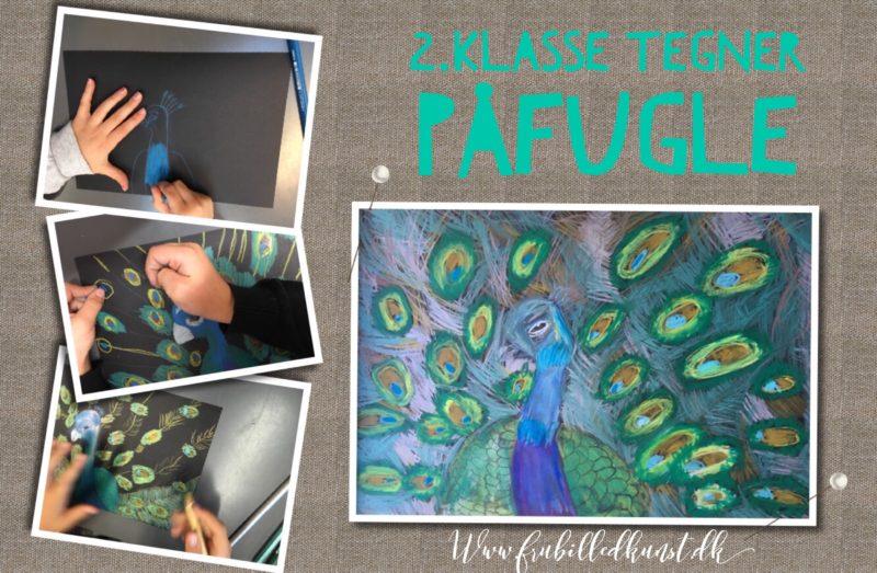 Påfugle i 2.klasse - se de fantastiske tegninger