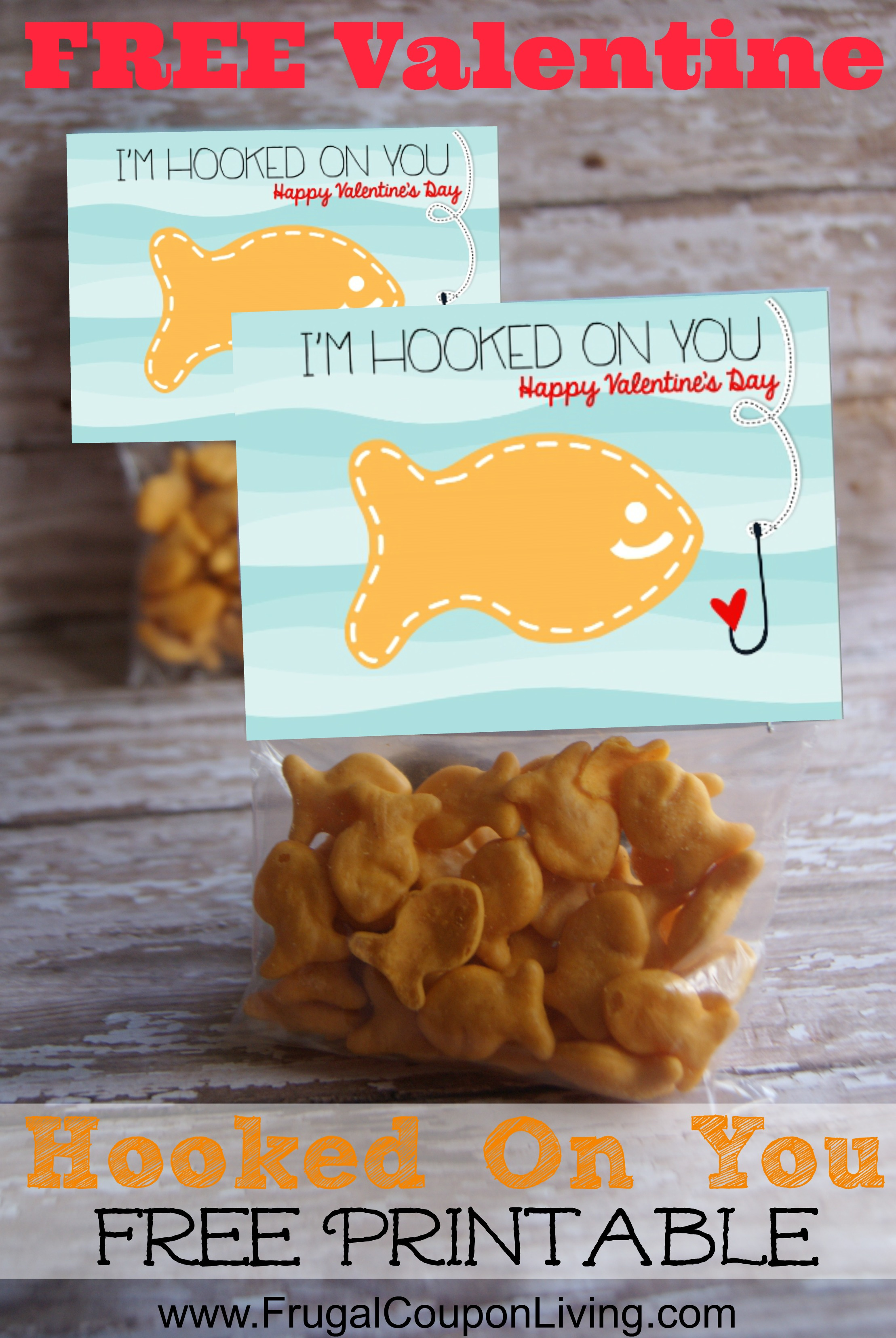 DIY Valentine Series Goldfish Hooked On You Valentines