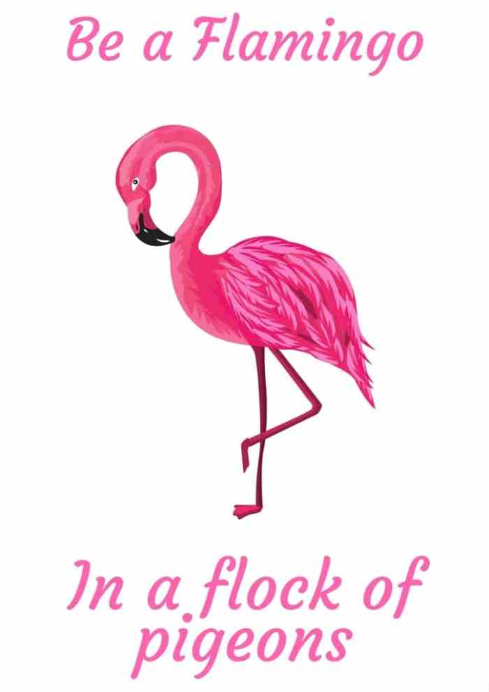Be a Flamingo in a flock of pigeons free printable
