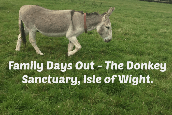 Family Days Out – The Donkey Sanctuary, Isle of Wight….