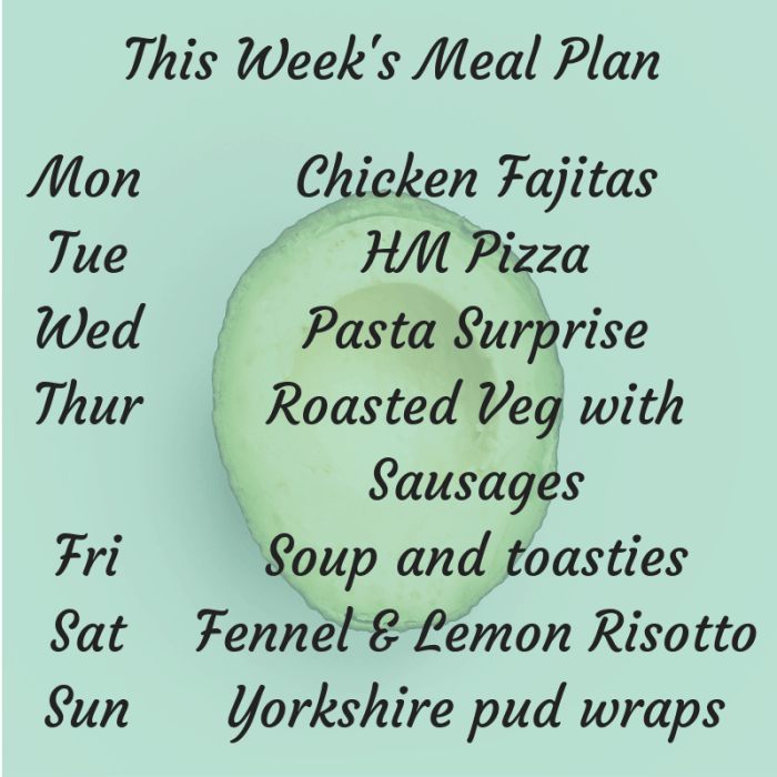 This Week's Meal Plan (1)