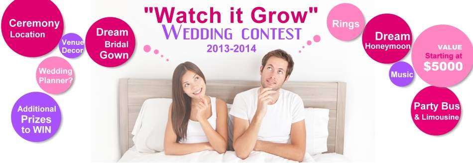 wedding-contests-2013-2014