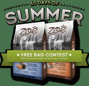 free-bag-contest