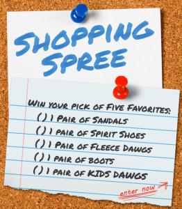 original_shopping-spree
