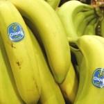 Contest ~ Enter to Win 1  of 1125 Del Monte Banana Costumes!