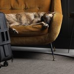 Contest ~ Enter to Win  Daard Modern Cabin Luggage!