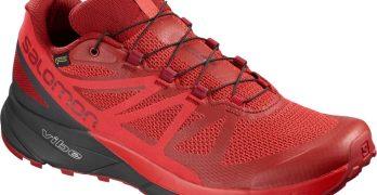 Contest ~ Enter to Win 1 of 5 Pairs of Salomon Sense Ride GTX Trail Shoes!
