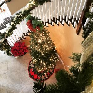Let the holiday season begin! Time to take down fallhellip