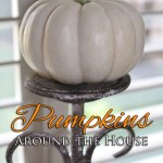 Fabulous Fall Home Decor -Pumpkin Style!