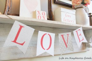 Easy & Affordable Valentine Decor Projects, a collection at FrugElegance.com
