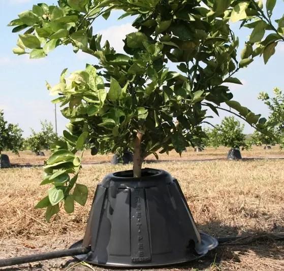 Tree T-Pee hp