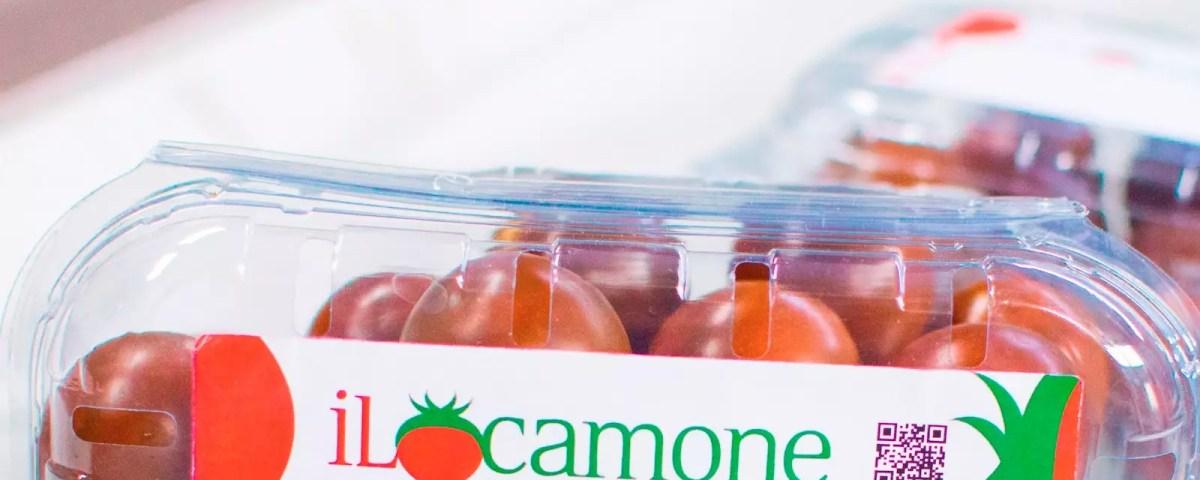 https://www.fruitbookmagazine.it/wp-content/uploads/2019/03/ilcamone_etichetta.jpg