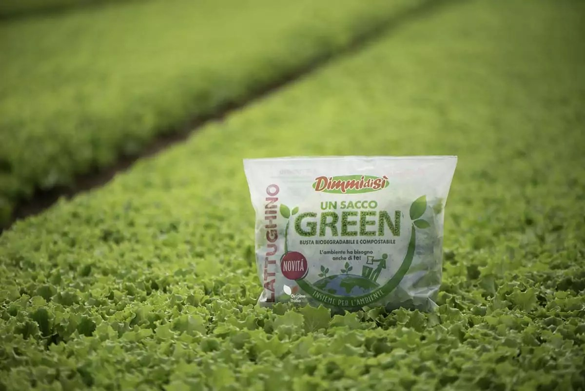 Un Sacco Green