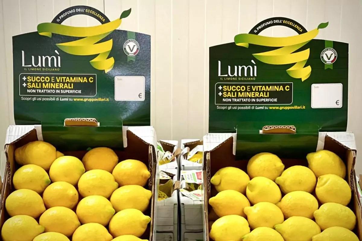 Villari-Lumi-limone-Sicilia-cassette-crowner
