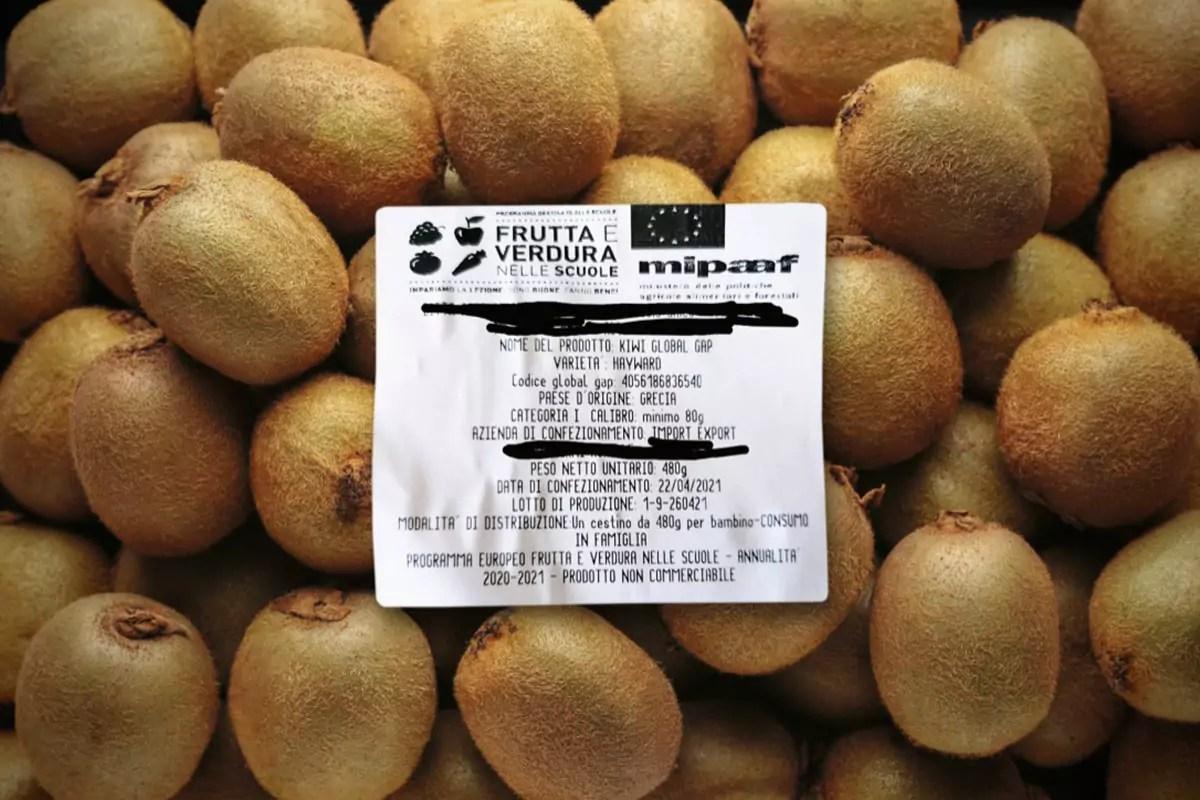 Frutta-nelle-Scuole-kiwi-Grecia-copy-Fm