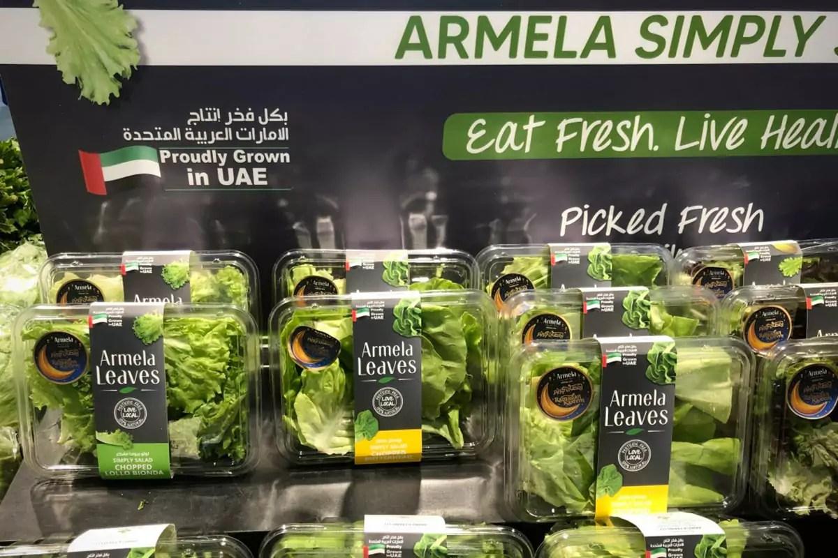 Emirati-UAE-insalate-Armela-Farms-copy-Fm-2021