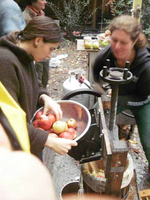 apple-pressing_4